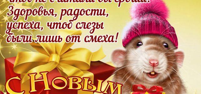 Коллектив МБОУ Амонашенская ООШ поздравляет Вас с наступающим новым годом!